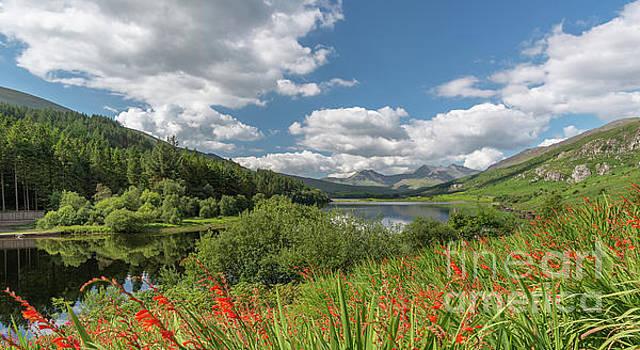 Adrian Evans - Snowdonia Lake