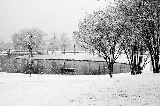 Snowy day on man made pond by Andy Lawless