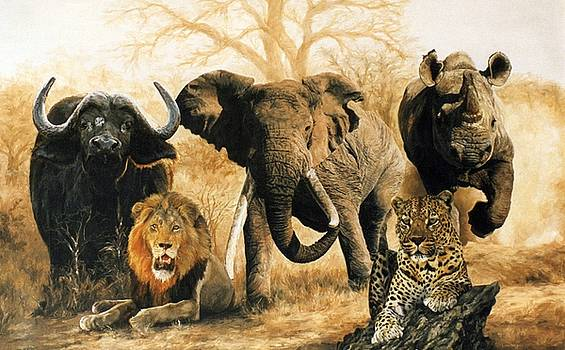 South Africa's Big five by Yvette Mey
