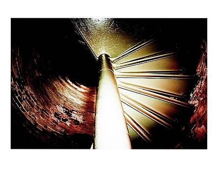 Spiral by Dana Flaherty