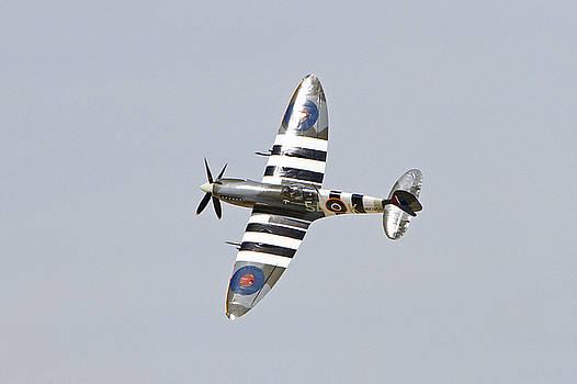 Spitfire in Flight by Shoal Hollingsworth