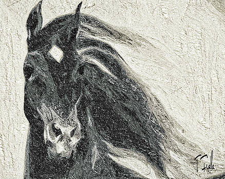 Stallion in Winter by Terry Fiala