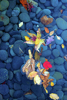 Stones0928 by Carolyn Stagger Cokley