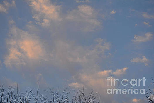 Sun In The Clouds  by Ruth Housley