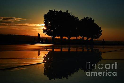 Sunset and Silhouettes by Lisa Plymell