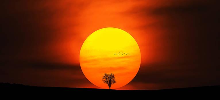 Sunset by Bess Hamiti