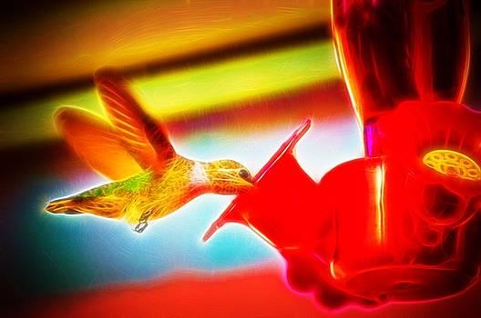 Cindy Nunn - Sweet Nectar
