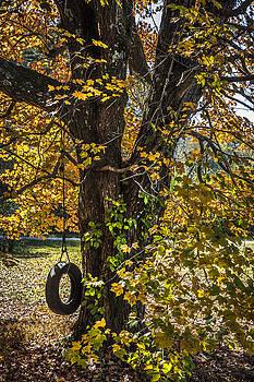 Debra and Dave Vanderlaan - Swing in the Maple Tree