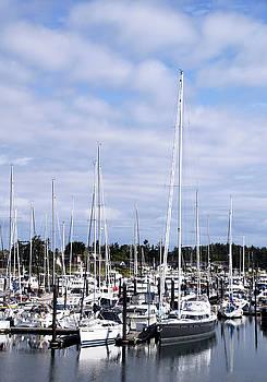 Sidney Pleasure Boat Harbor British Columbia Canada Photo by Barbara Snyder