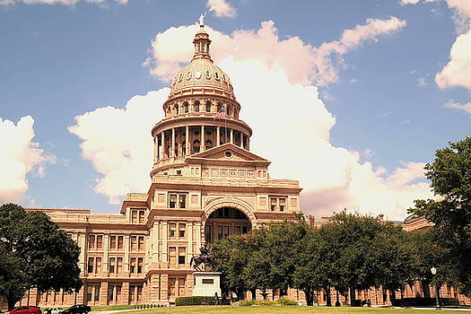 Texas State Capital  by Renee McDaniel