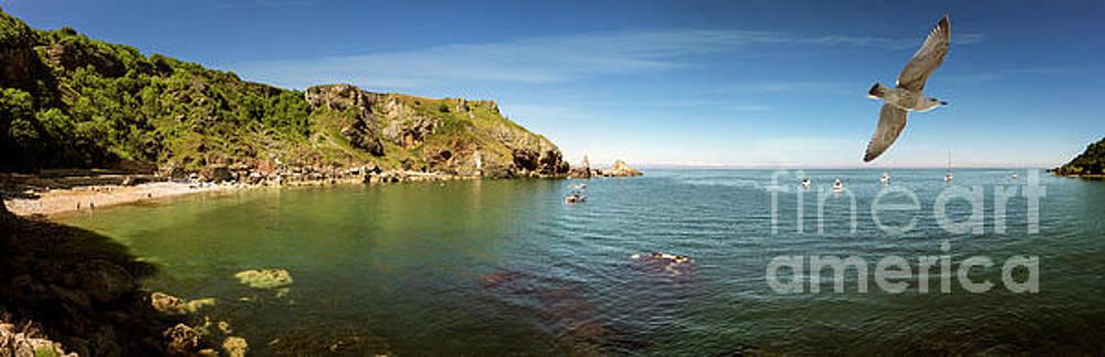 The Bay by Edmund Nagele