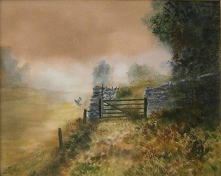 The Gate by Andy Davis