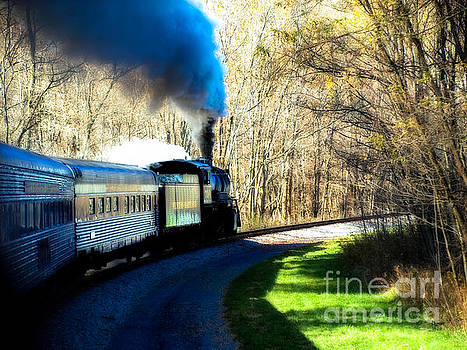 The Locomotive  by Steven Digman