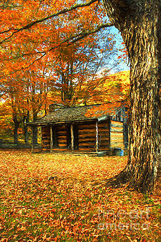 The Old Home Place by Darren Fisher