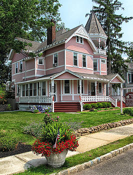 The Pink House by Dave Mills