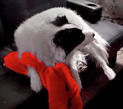 The Red Blanket by Aliceann Carlton