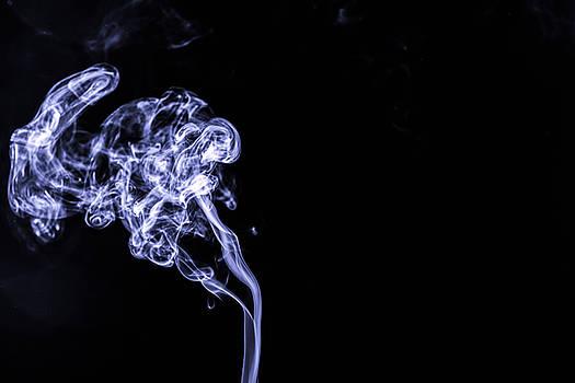 The smoke by Alex Land