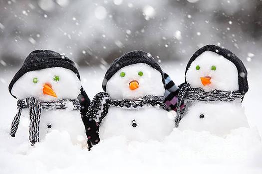 Three cute snowmen by Simon Bratt Photography LRPS