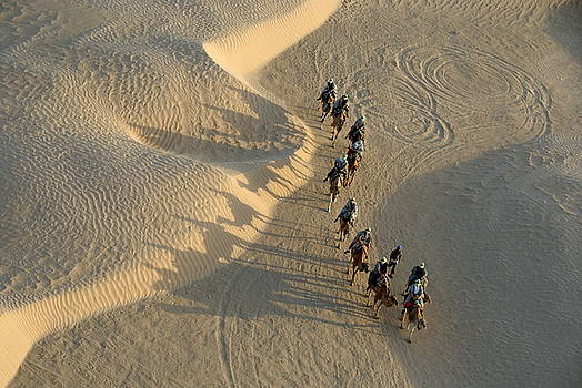 Sami Sarkis - Tourists on camel ride in Sahara Desert