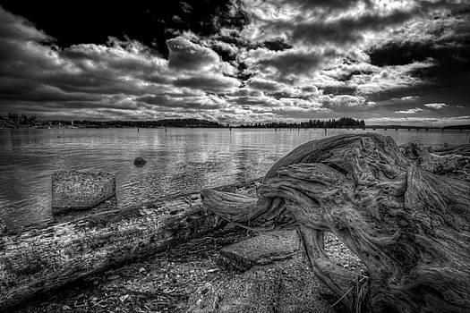 Tulalip Bay by Spencer McDonald