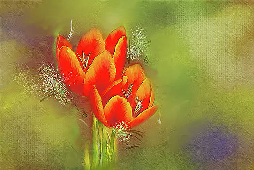 Tulips by Mary Timman