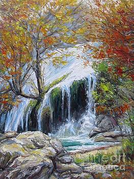Turner Falls Oklahoma by Vickie Fears