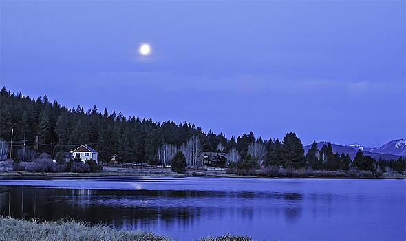 Under a Winter Moon by Nancy Marie Ricketts