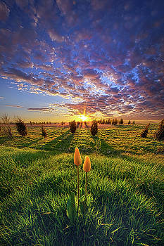 Until Then by Phil Koch