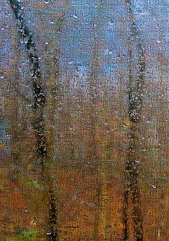 untitled Trees by Wendell Lowe