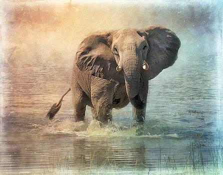 Water play. by Lyn Darlington