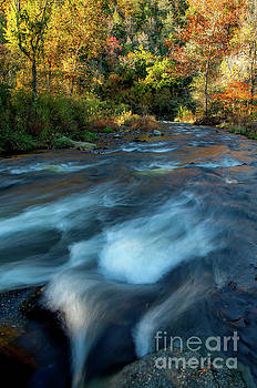 Waves in the River by Iris Greenwell