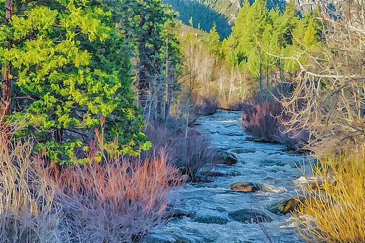 West Fork Rapids by Nancy Marie Ricketts