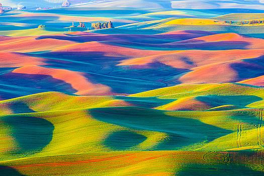 Wheat rolling field - Palouse by Hisao Mogi
