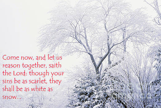 White as Snow by Thomas R Fletcher