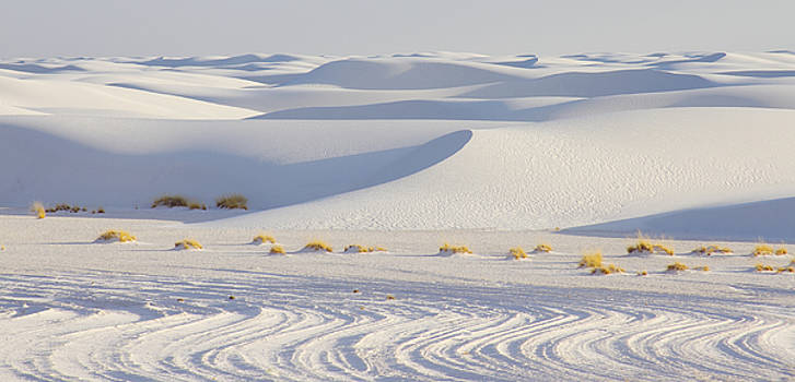 White Sands New Mexico by Elvira Butler