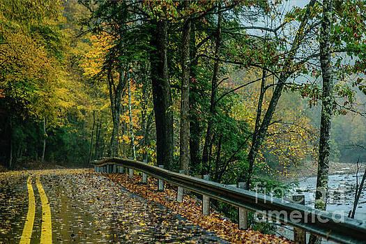 Williams River Road Autumn Rain by Thomas R Fletcher