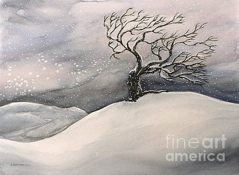Windswept by Cori Caputo