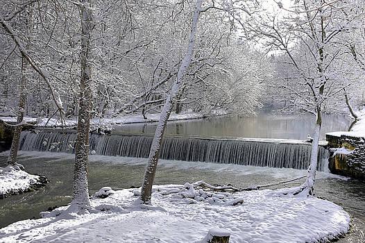 Winter Morn by Dan Myers