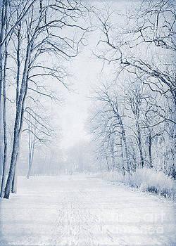 Svetlana Sewell - Winter Path
