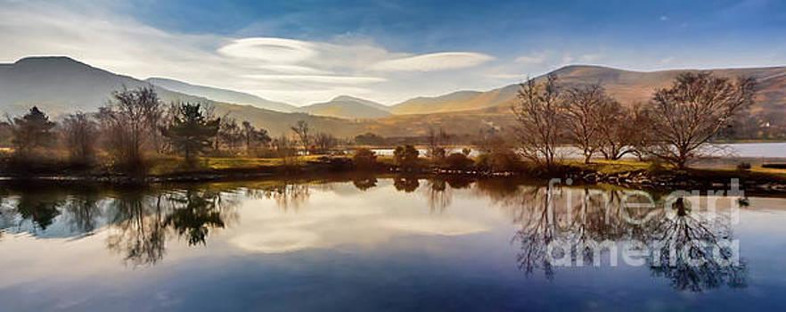 Adrian Evans - Winter Reflections
