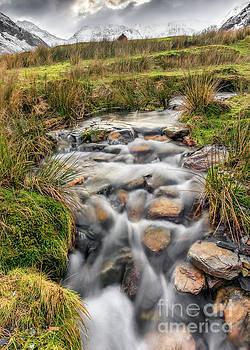 Adrian Evans - Winter Stream