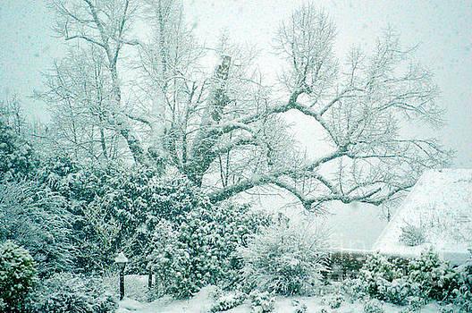 Susanne Van Hulst - Winter Wonderland in Switzerland