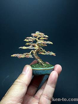 Wire bonsai tree by Ken To  by Ken To