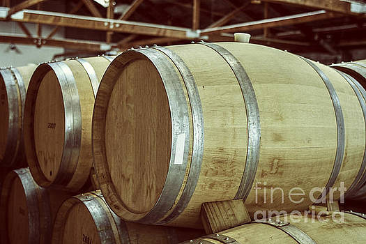 Patricia Hofmeester - Wooden wine barrels