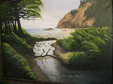 Work In Progress--Serenity by Ida Brown