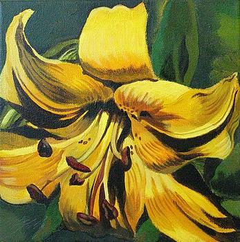 Alfred Ng - yellow lily