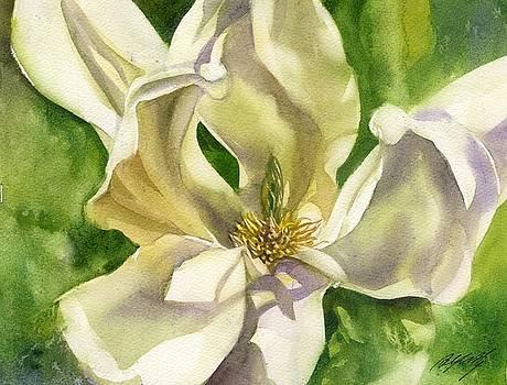 Alfred Ng - yellow magnolia