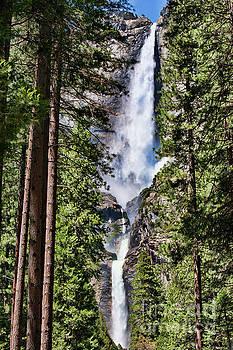 Chuck Kuhn - Yosemite Falls IV