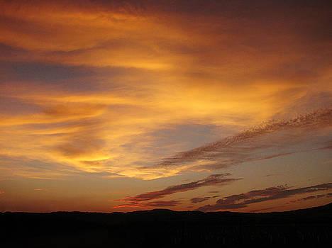 101415 Sunset by Carol Welsh