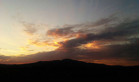101515 Sunset by Carol Welsh
